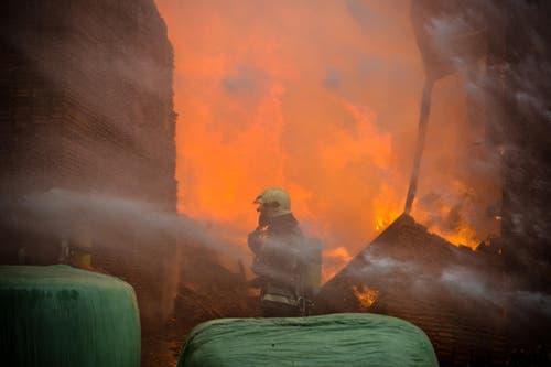 Für die Feuerwehrleute war der Grossbrand eine gefährliche Angelegenheit. (Bild: Dominik Wunderli / Neue LZ)