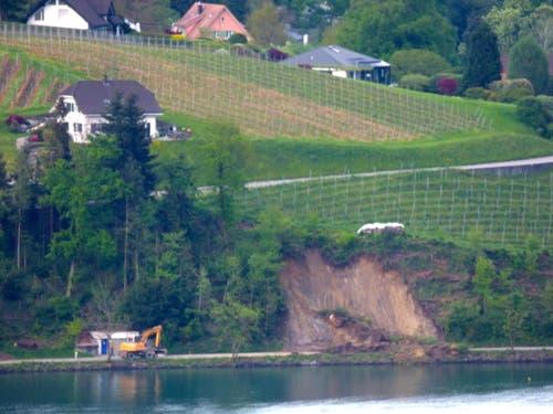 Der Erdrutsch vom gegenüberliegenden Seeufer aus fotografiert. (Bild: Leserbild Nicole Hasler)