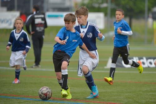 Die Spieler der Clubs Bern-West und die Spieler des FC Luzern kämpfen um den Ball. (Bild: Martin Meienberger)