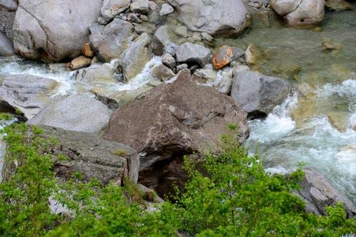 Ganz unverdächtig: Das Stück Fels liegt erst seit vergangenen Mittwoch im Bachbett der Reuss. (Bild: Keystone / Urs Flüeler)