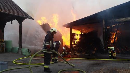 Aufr dem Areal der Sägerei gehen die Feuerwehrleute gegen den Brand vor. (Bild: Dominik Wunderli / Neue LZ)