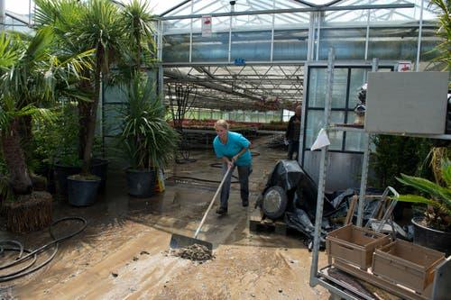 Melinda Omlin, Mitarbeiterein der Gärtnerei Widler, beseitigt die letzten Schlammresten aus und vor dem Gewächshaus. (Bild: Dominik Wunderli (Neue LZ))