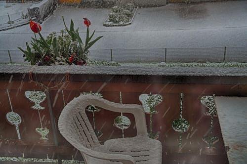 Montagmorgen auf einem Balkon in Beckenried. (Bild: Leserin Regula Aeppli)