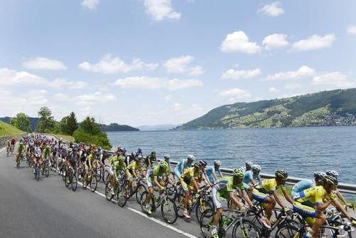 16. Juni: 78. Tour de Suisse in der Zentralschweiz. Die Sportler am Zugersee in der Nähe von Arth während der dritten Etappe von Sarnen nach Heiden. (Bild: Keystone)