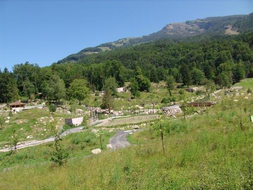 2009 wurde dann die neue Bär- und Wolfanlage eröffnet. (Bild: pd / Tierpark Goldau)