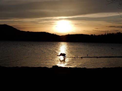 Was will man noch mehr, ein wunderschöner Sonnenuntergang und ein perfekter Start in die Nacht ! Dienstag, den 03.04.2018 um 19.45 Uhr am General Guisan-Quai. (Bild: Margrith Imhof-Röthlin)