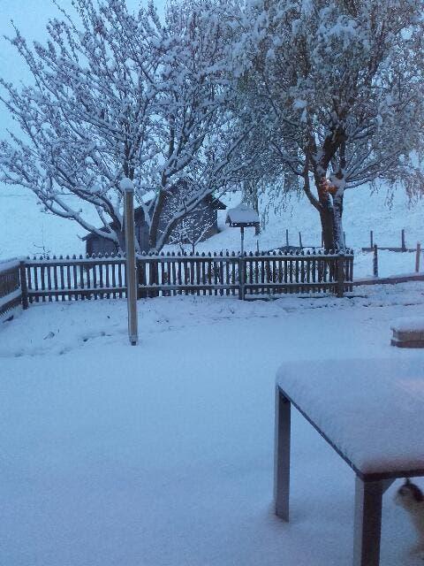 Schnee in Schüpfheim Oberberg. (Bild: Leserin Bernasette Fallegger)