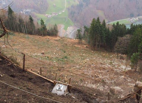 20. November: Im Steilhang sind total 1464 Bäume gefällt worden. Hier werden sich die beiden Bahnen kreuzen. (Bild: PD)
