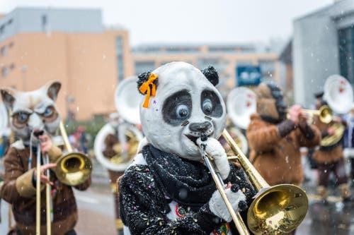 Gögguschränzer Littau mit dem Motto «Kung Fu Panda». (Bild: Roger Grütter (Littau, 11. Februar 2018))