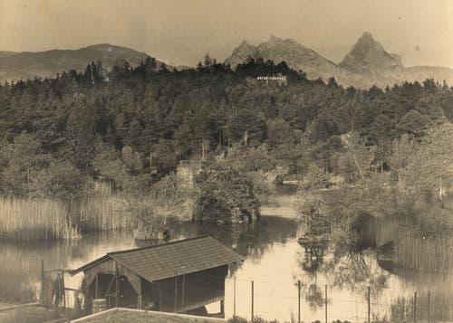 Die ehemalige Schiffshütte am Blauweiher stand von 1927 bis 1935 – im Hintergrund die an Hollywood erinnernde Werbeschrift des Tierparks. (Bild: pd / Tierpark Goldau)