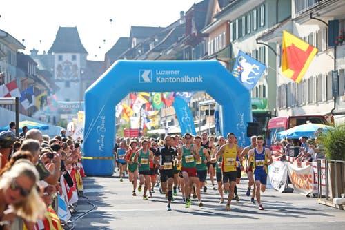 Willisauer Lauf 2016 am Samstag, 24. September 2016. (Bild: Philipp Schmidli / Luzerner Zeitung)