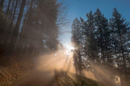 Wunderschöne Morgenstimmung im Ägerital (Bild: Martin Wirz)