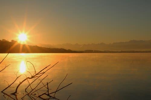 Ein kalter aber schöner morgen am Sempachersee (Bild: Irene Wanner)