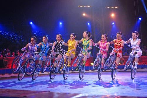 Die sieben jungen Frauen aus China vollbringen auf ihren Kunstfahrrädern einen unbändigen Ritt durch die Manege. (Bild: PD)