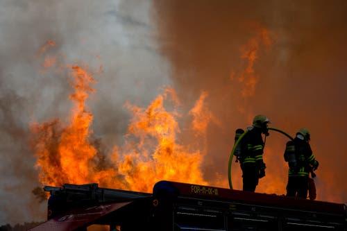 Feuerwehrleute im Einsatz. (Bild: Dominik Wunderli / Neue LZ)