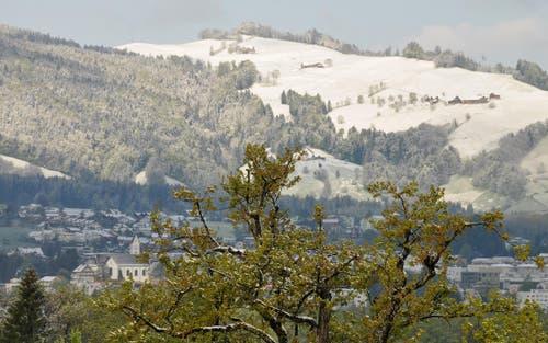Ein winterlicher Frühlingsmorgen. Gesehen durch das Tele. Im Hintergrund die Galluskirche Kriens. (Bild: Leser Niklaus Rohrer)