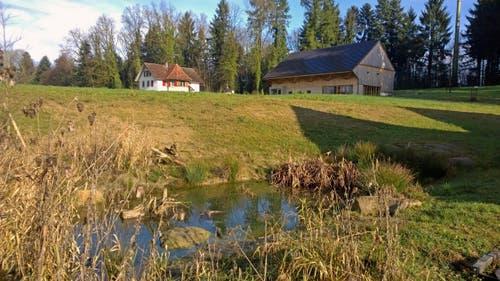Kanton Zug: Flachmoor in Cham (Bild: Ziegelei-Museum)