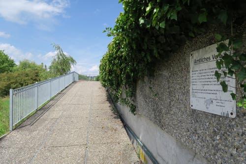 Um dorthin zu gelangen, muss man das Dach des Bootshauses via diesen Weg erklimmen. (Bild: Stefanie Nopper / Luzernerzeitung.ch)