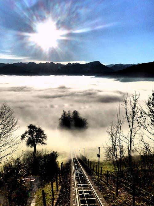 Platz 3 – 1030 Gefällt mir: Blick vom Sonnenberg auf die Nebellandschaft (13. Dezember). (Bild: Leser Walter Buholzer)
