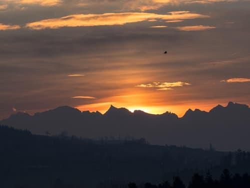 Sonnenaufgang über Grossem Schärhorn und Ober Bauenstock. (Bild: Hubert Zurbuchen)