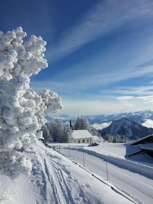 Platz 6 – 684 Gefällt mir: Winterlandschaft bei der Kapelle Rigi Scheidegg (14. Februar). (Bild: Leser Ruedi Althaus)