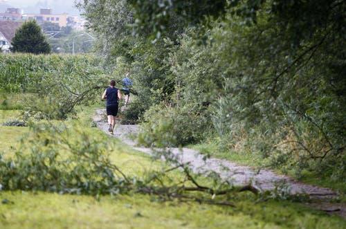 Entlang des Seewegs beim Brüggli in Zug wurden mehrere Äste von Bäumen gerissen. (Bild: Stefan Kaiser / Neue ZZ)
