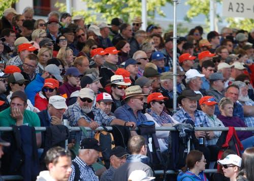 3500 Zuschauer verfolgen das Schwingen auf der Dorfmattwiese in Baar. (Bild: Stefan Kaiser)