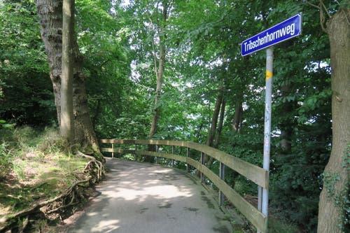 ... und diesen Weg entlang. (Bild: Stefanie Nopper / Luzernerzeitung.ch)