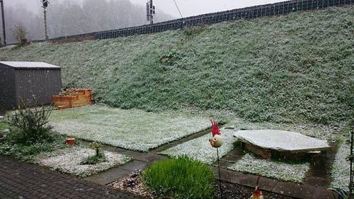 Leserbild von Katrin Metlicka aus dem Zürcher Oberland. (Bild: Katrin Metlicka)