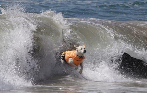Bewertet wurden unter anderem die Sicherheit auf dem Brett und die Dauer des Wellenreitens. (Bild: Keystone)
