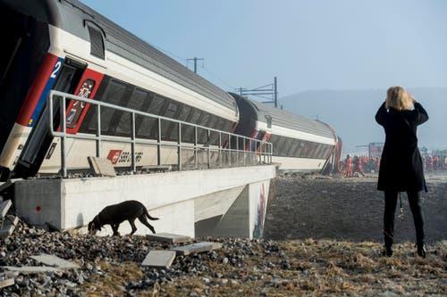 Sechs Personen sind am Freitagmorgen bei einer Zugskollision beim Bahnhof Rafz ZH verletzt worden, eine davon schwer. (Bild: Keystone / Ennio Leanza)