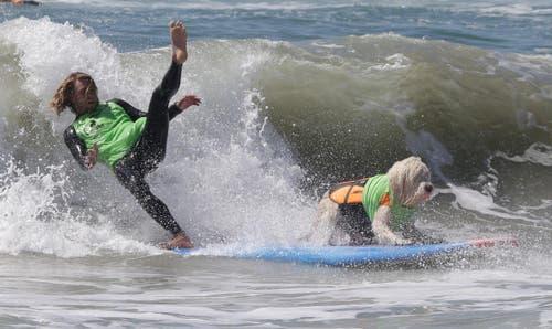 Herrchen kämpft mit den Tücken der Wellen. (Bild: Keystone)