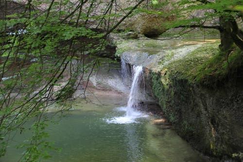 Eine Schlucht mit Wasserfall, Staumauer und einer gedeckten Holztreppe versteckt sich zwischen Degersheim und Gossau. Der Weg zur Wissbachschlucht führt durch kleine Weiler, über Wiesen und im anschliessenden Naturschutzgebiet an idyllischen Grillplätzen vorbei. (Bild: Andrea Kern)