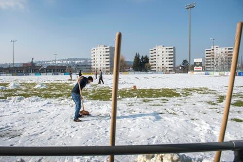 Flüchtlinge räumen den Schnee im Paul-Grüninger-Stadion damit der SC Brühl am Wochenende spielen kann (Bild: Urs Bucher)