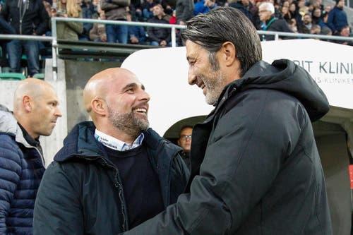 FC St. Gallen Trainer Giorgio Contini begrüsst kurz vor Spielbeginn GC Trainer Murat Yakin. (Bild: Keystone)