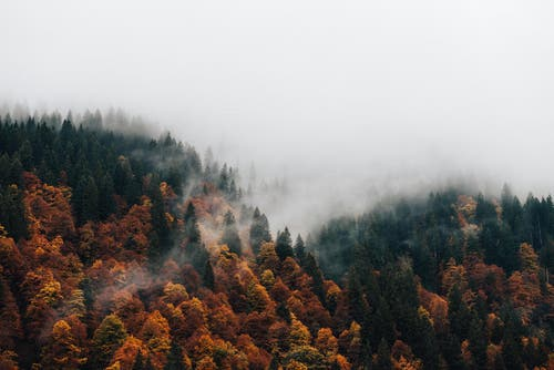 Herbst-Stimmung in den Alpen. (Bild: PD / Silvan Widmer)