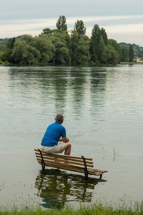Sandro Schmid fotografierte am Montagabend auf der Insel Werd bei Stein am Rhein. (Bild: Sandro Schmid/Leserbild)