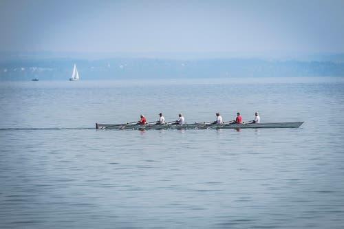 In Egnach rudert eine Gruppe auf dem Bodensee. (Bild: Ralph Ribi)