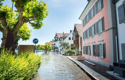 Hochwasser in Gottlieben. (Bild: Andrea Stalder)