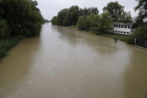 Der Alte Rhein bei Rheineck. (Bild: Rudolf Hirtl)