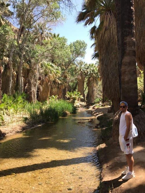 Wanderung in Palm Springs. (Bild: pd)