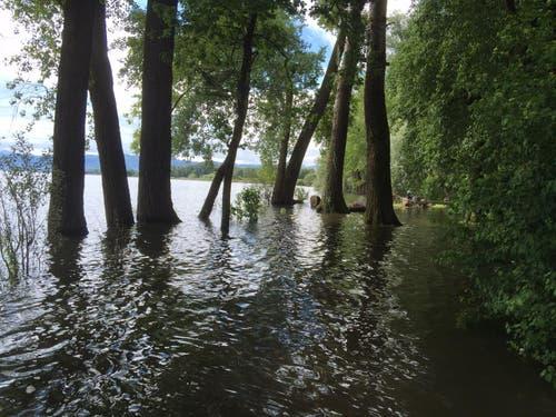 Dieses Wasser reicht für den ganzen Sommer. (Bild: Hannes Stricker)
