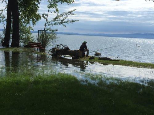 Vorne See, hinten See in Kesswil. (Bild: Hannes Stricker)