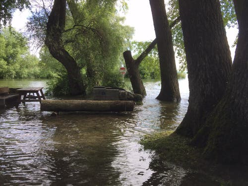 Badewiese und Grillplatz von Kesswil stehen unter Wasser. (Bild: Hannes Stricker)