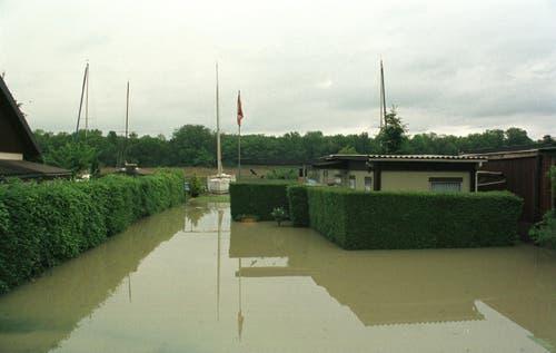 Auch Ferienhäuser am Alten Rhein standen unter Wasser. (Bild: Archiv)