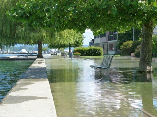 Der Adolf-Deucher-Quai in Steckborn steht unter Wasser. (Bild: Gudrun Enders)