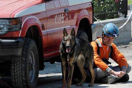Ein Feuerwehrmann wartet mit seinem Hund im Schatten eines Autos in Cavezzo . . . (Bild: Keystone / AP)