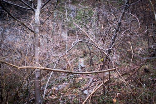 Ein Stein Markiert die Grenze zum FŸrstentum Liechtenstein. (Bild: Benjamin Manser)