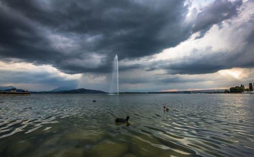 Kurz vor dem Gewitter gab es dunkle Wolken über dem Zugersee. Leserbild: Daniel Hegglin