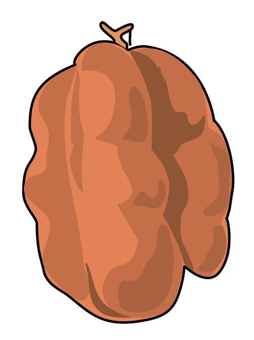 Boutefas: Waadt für eine Wurst! Ihr Name ist von «boute la faim» («verjagt den Hunger») abgeleitet. Eine Boutefas kann bis zu zwei Kilo wiegen und aussehen wie ein Fussball, dem die Luft ausgeht. Unförmig, aber saugut – falls das Schwein nicht zu fett war. (Illustration: Selina Buess)